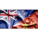What 2020 looks like for Kiwi exporters in China